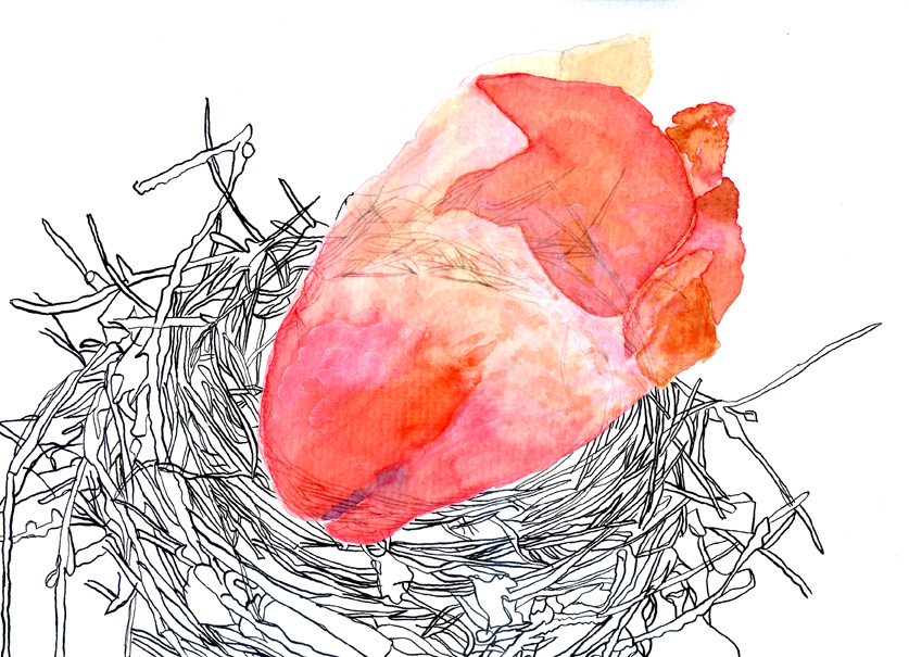 organic-nest-1-72dpi